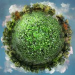 коллажи фантастических экосистем  | Catherine Nelson