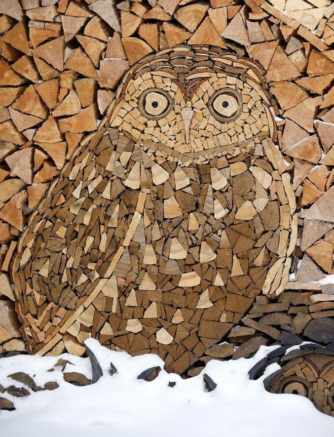 сова, дрова на зиму