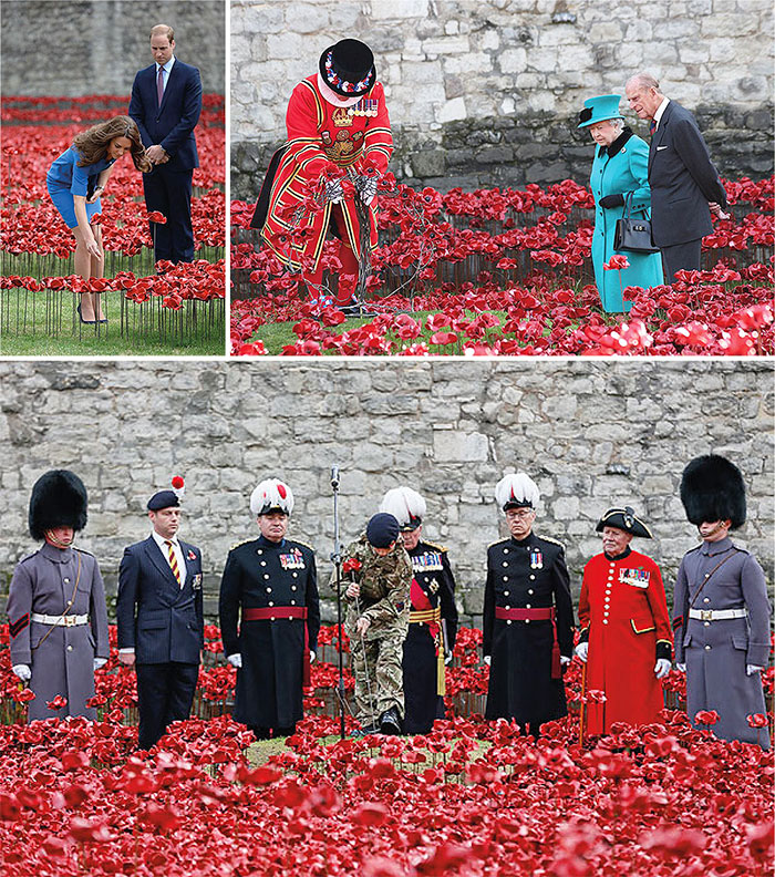 ActualArtisi.ru-The-Poppy-Appeal-07