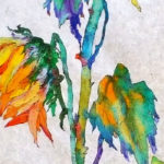 шотландские АКВАРЕЛИ | Sofia Perina-Miller