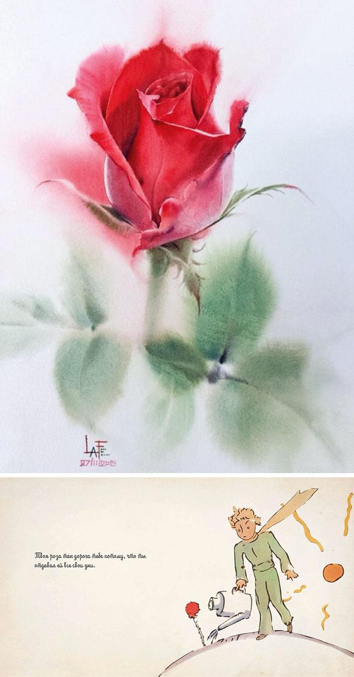 Роза 1