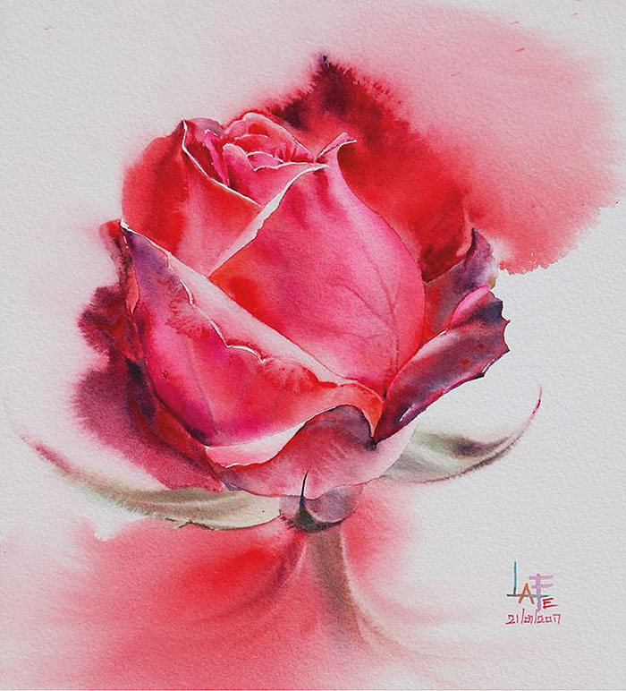 Роза 8