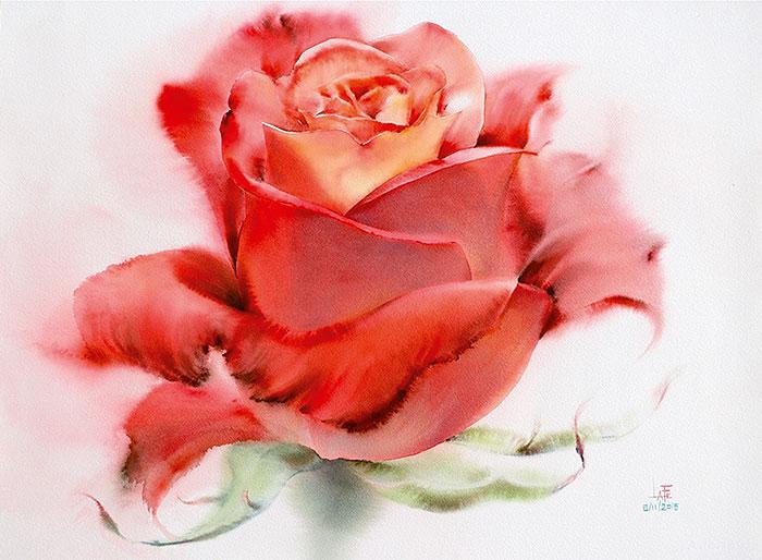 Роза 9
