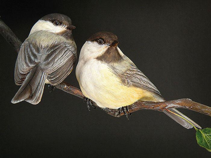 Птицы 3