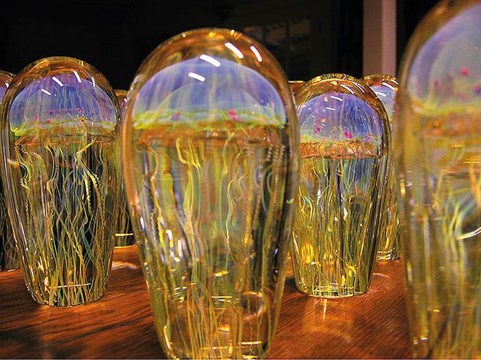 медузы в стекле