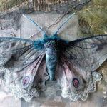 ФАНТАЗИИ натуралиста | Annemieke Mein