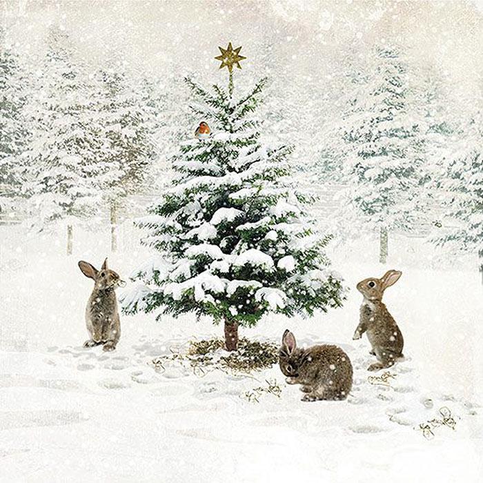 Зайцы у елки