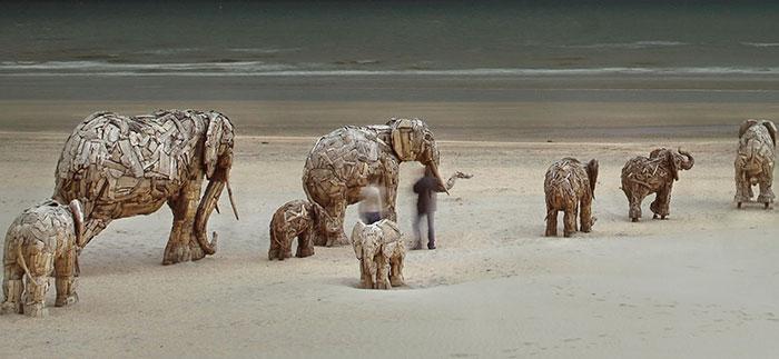 африканские слоны