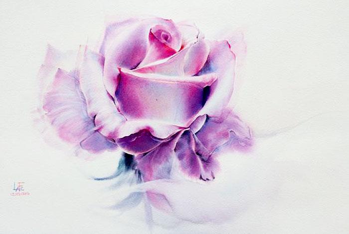Роза 16