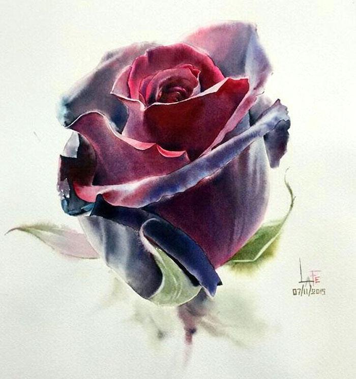 Роза 18