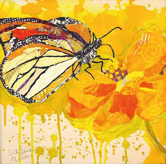 коллаж бабочка