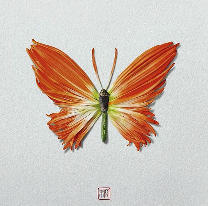 цветок бабочка