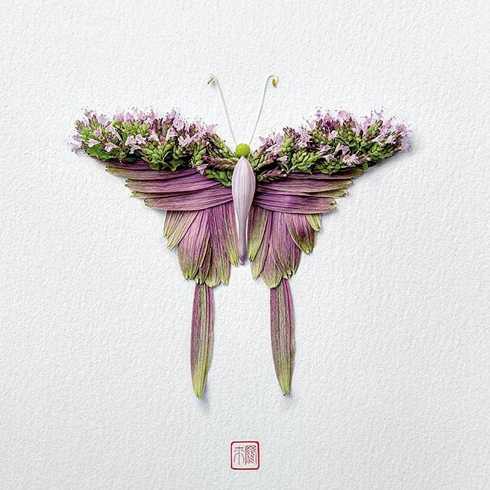красивые бабочки
