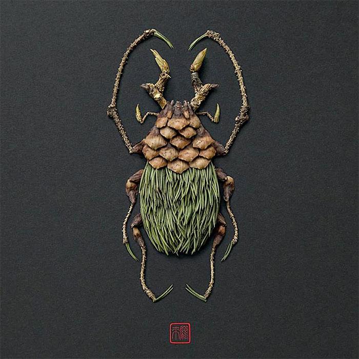 жук из растений