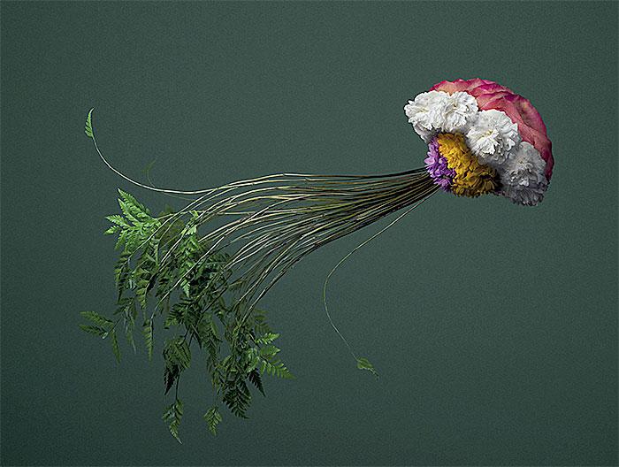 медуза из цветов