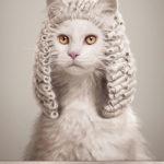 А судьи кто?… или ПЕРЕДЕЗАЙНЕРИЛИ…